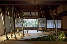 ギャラリー | 花匠 佐々木直喜 Papua New Guinea, Ikebana, Surrealism, Architecture, Floral, Flowers, Plants, Design, Home Decor