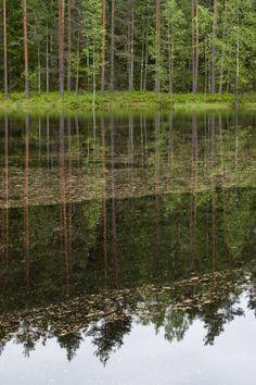 Nuuksio national park, Finland / UKKONOOA