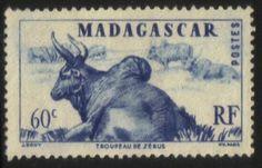 Le fameux zébu de Madagascar sur un timbre