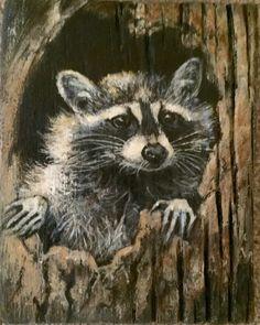 Raccoon acrylic on barn wood