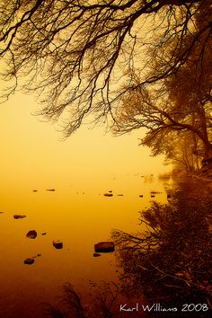 Tranquility (by Karl Williams) Lake of Menteith Williams Lake, Yellow And Brown, Nature Pictures, Color Mixing, Serenity, Places To Go, Sunrise, Beautiful Places, Pink