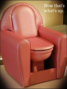 Comfort lol. Bizarre toilets from around the world