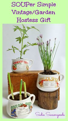 """What a great way to repurpose those retro soup mugs from thrift stores! Turn them into a charming planter this spring with an """"ingredient"""" seedling or herb from the recipe printed on the mug!! Truly a hostess gift that keeps on giving, all summer long...especially for someone that loves vintage / garden pieces. #SadieSeasongoods"""