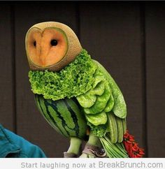 A fruit and veg owl! That's right, an owl made entirely of fruit and vegetables! creative food culinary Plus Fruit Sculptures, Food Sculpture, Animal Sculptures, L'art Du Fruit, Fruit Art, Fruit Salad, Fresh Fruit, Eat Fruit, Melon Salad