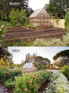 BeforeAfter Shots of Sunset Magazine cut flower garden