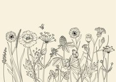"""Take a look at my @ Behance project: One-Sheet Calendar – Meadow Flowers"""" ww … - Top 99 Pencil Drawings Flower Line Drawings, Botanical Line Drawing, Floral Drawing, Botanical Drawings, Drawing Flowers, Illustration Blume, Botanical Illustration, Doodle Drawings, Doodle Art"""