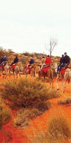 Camel rides at Uluru, NT.