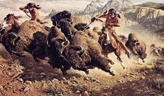 American Indian's History and Photographs: About Native American Hunting and Fishing Native American Hunting, Native American Photos, American Indian Art, Native American History, American Artists, American Indians, American Animals, American Bison, American Pride