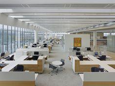 Novartis Building 337 | Rafael Viñoly Architects | View of work space. Photo: Bruce Damonte