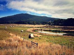 Bruny Island, Tasmania, Australia.    #seeaustralia @Australia