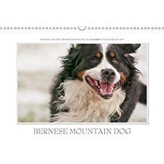 Bernese Mountain Dog Calendar 2018 Emotional Moments: Bernese Mountain Dog. UK-Version 2018: Ingo Gerlach Gdt Has Held the Bernese Mountain Dog in Age and Youth in Attractive Images. (Calvendo Places)