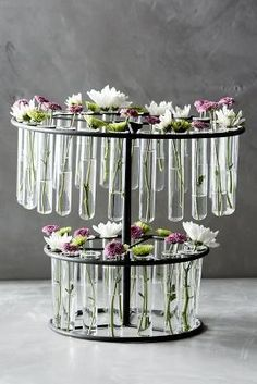 Great Laboratory Vase By Anthropologie Clear One Size Vases Design