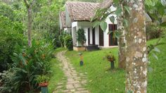 Cardamaom Club Plantation Resort - Thekkady/Kerala