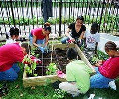 34 best School Gardens images on Pinterest | Gardening, Growing ...