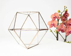 Geometrie Glass Terrarium