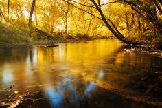 River of gold | Flickr - Photo Sharing!