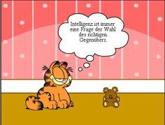 Hollander in Duitsland: Relatieve intelligentie