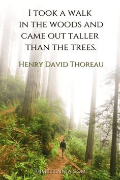 199 Wonderful and Inspiring Quotes on Woods and Forests   phmillennia