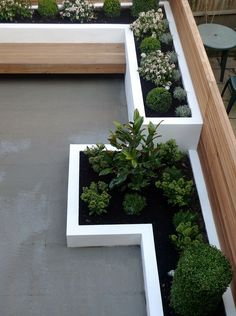 Garden design designer clapham balham battersea small low maintenance modern garden (4)