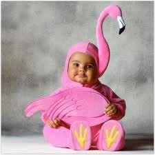 flamingo baby costume