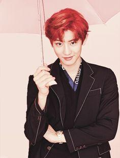 Las etiquetas más populares para esta imagen incluyen: exo, chanyeol, park chanyeol, kpop y pink