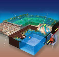 piscinas ecológicas - Pesquisa do Google