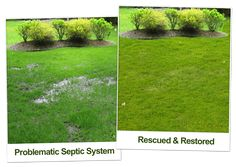 Septic tank treatment and maintenance products that can Rescue any Septic tank problems. No septic tank pumping - use this bacteria additive Septic Tank Problems, Septic Tank Covers, Septic Tank Service, Septic System, Restore, Outdoor Gardens, Restoration, Cleaning, Outdoor Decor