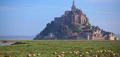 Hotel Mont Saint Michel : Auberge Le Mouton Blanc et Restaurant traditionnel - l'Auberge Le Mouton Blanc