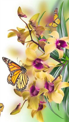 We sell small Cremation Urns that everyone can afford! Butterfly Wallpaper, Butterfly Flowers, Monarch Butterfly, Butterfly Wings, Beautiful Butterflies, Flower Art, Beautiful Flowers, Butterfly Pictures, Canvas Wall Decor