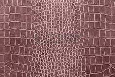 Resultado de imagem para textura de crocodilo