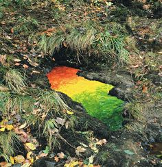 Magical Land Art By Andy Goldsworthy. Andy Goldsworthy is a British sculptor, renowned in his field, that creates temporary installations out of sticks and stones, and anything and everything else that he finds outside.