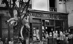 In Praise of Bookstores ‹ Literary Hub