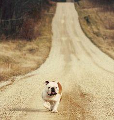 I'm comin' home!