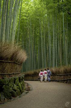 Arishiyama Bamboo grove, Kyoto, Japan. My dad grew up in that town^^