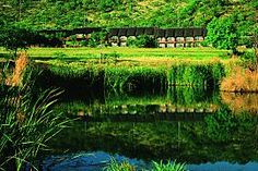 Photo Gallery of Bakubung Bush Lodge, Pilanesberg National Park, South Africa African Vacation, North West Province, African Holidays, Game Lodge, Holiday Destinations, Amazing Places, South Africa, The Good Place, Photo Galleries