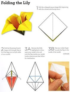 How to fold an origami lily from Origami 101: Master Basic Skills and Techniques Easily Through Step-by-Step Instruction by Benjamin Coleman.  Nice for Mother's Day