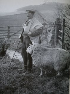 the maud — the traditional shepherd's plaid that's woven and worn in the Scottish Borders. You can see one above being used for its original function — protecting the shepherd and his lambs from the elements. Alpacas, Farm Animals, Cute Animals, Sheep And Lamb, The Good Shepherd, Art Textile, Vintage Photographs, Farm Life, Old Photos