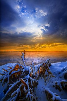 Restless Shores by Phil Koch on 500px