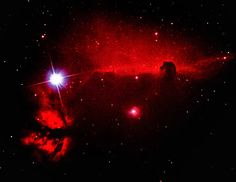 """Photo: Horsehead & Flame Nebulae  Technical card Imaging telescope: Skywatcher Explorer 200p Imaging camera: Canon 1100D Mount: HEQ5 Guiding telescope: SkyWatcher 50mm/162mm Finderscope Guiding camera: QHYCCD qhy-5 II Software: APT - Astro Photography Tool,  DeepSkyStacker,  Adobe PhotoshopCS5 Filters: Astronomik CLS Canon EOS Clip Date: 2016-11-05 Frames: 19x60"""" ISO 3200 Bortle Dark-Sky Scale: 5.00 Centre (RA, hms):05h 41m 12.606s Centre (Dec, dms):-02° 12' 32.584"""" Size:64.5 x 49.9…"""