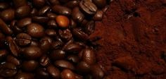 What Are the Benefits of Putting Coffee Grounds on Garden Plants? | eHow