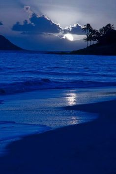 Ocean-side paradise?