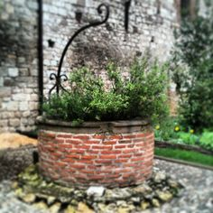 Pozo en Le cloitre Saint-Salvi, en Albi, Francia Johnson Family, Water Well, Wishing Well, Coffee Cafe, Bed And Breakfast, Wells, Landscaping, Old Things, Exterior