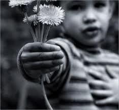 pequenos gestos