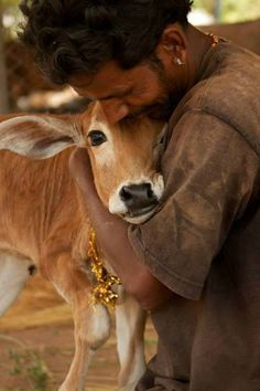 """""""awwww that's TuTu. His mother died, but his caretakers love him dearly."""" - Shafali Darling"""