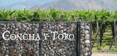 Чудеса чилийского виноделия Firewood, Texture, Crafts, Shells, Surface Finish, Woodburning, Manualidades, Handmade Crafts, Craft
