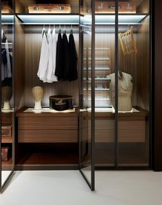 What a great idea - steel framed glass doors for the walk-in-robe