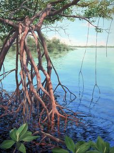 """""""Purple Dusk"""" x giclee print on stretched canvas Grape Painting, Bird Painting Acrylic, Landscape Art, Landscape Paintings, Indian River Lagoon, Jungle Art, Underwater Painting, Mangrove Forest, Web Design"""