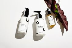 Three New Natural Skincare Lines Worth Watching: From a potent line highlighting Caribbean flora to Hudson Valley products tailored for men