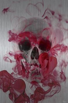 Skull 2 Aluminum Wall Art