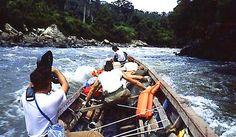 Jacek Pałkiewicz Borneo 1986. http://palkiewicz.com/ekspedycje/borneo-od-brzegu-do-brzegu/ ● Jacek Palkiewicz Borneo 1986. http://en.palkiewicz.com/expeditions/borneo-coast-to-coast/